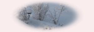 Schnee 25012015-001